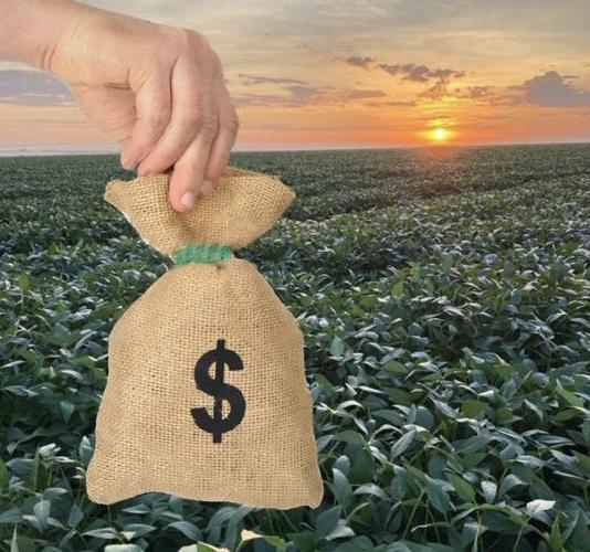 Como a Reforma Tributária pode impactar o Agronegócio