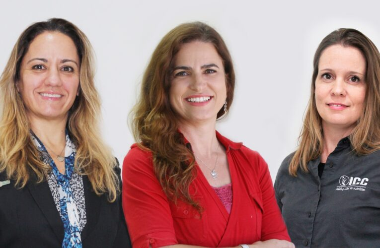 Mulheres na ICC Brazil: determinação e garra