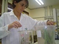 Embrapa promove V Workshop de Ecologia Química