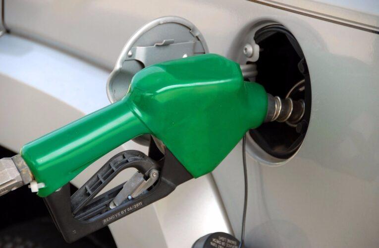 biocombustíveis prevê expansão sustentável