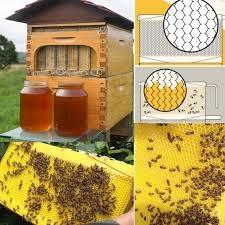 O que é o sistema Flow Hive para colmeias de abelhas?