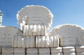 Produção de grãos e fibra no oeste da Bahia é a maior