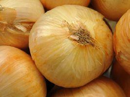Grupo dos hortifrutigranjeiros fica 2,95% mais caro