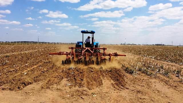 Agronegócio do Mato Grosso