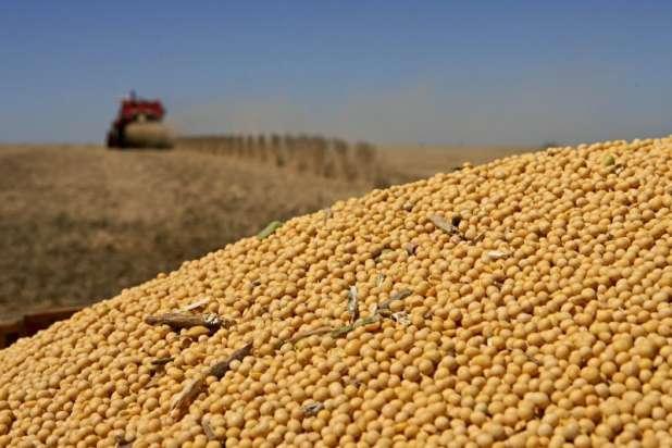 Preço à vista da soja no Brasil atinge novo recorde