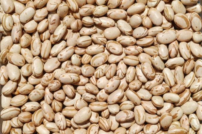 Preço do feijão aumenta mais de 200% desde janeiro