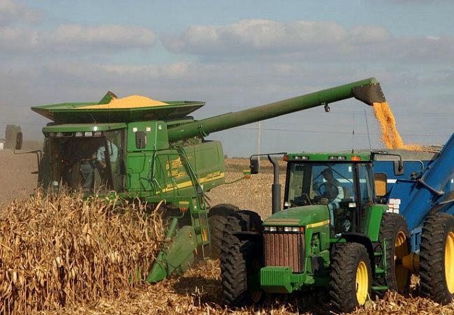 Queda na produção da segunda safra do milho 2015/2016