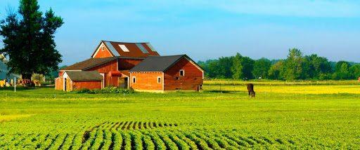 Crédito Rural e Muito mais