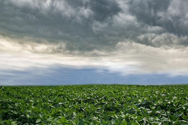 Chuvas abaixo da média para região oeste do MT