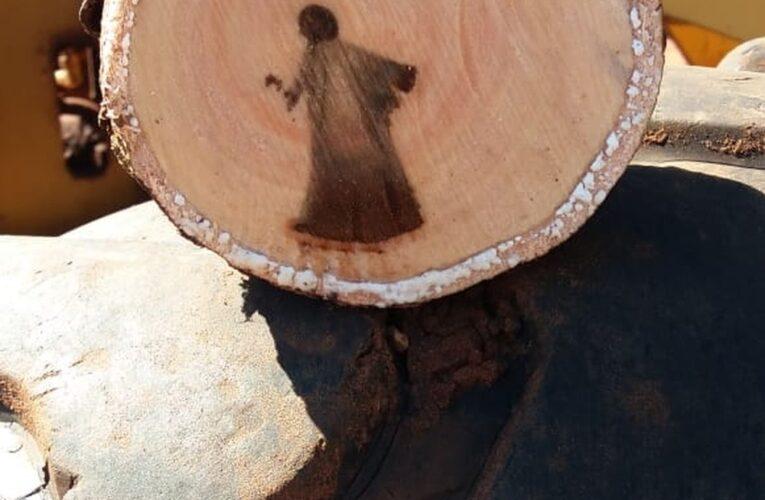 Imagem de Jesus que aparece em tronco de árvore