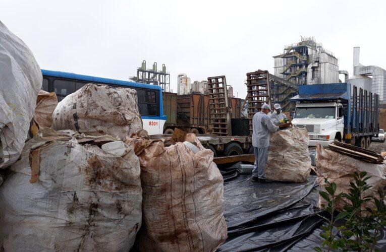 Projeto recolhe 200 toneladas de embalagens vazias