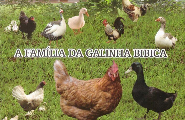 A família da galinha Bibica