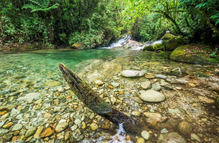 Dia Mundial da Água celebra sustentabilidade do Agro BR