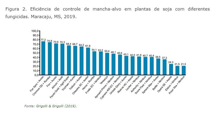 Mancha-alvo: Confira a eficiência dos fungicidas