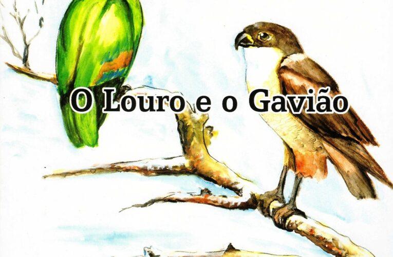 O Louro e o Gavião