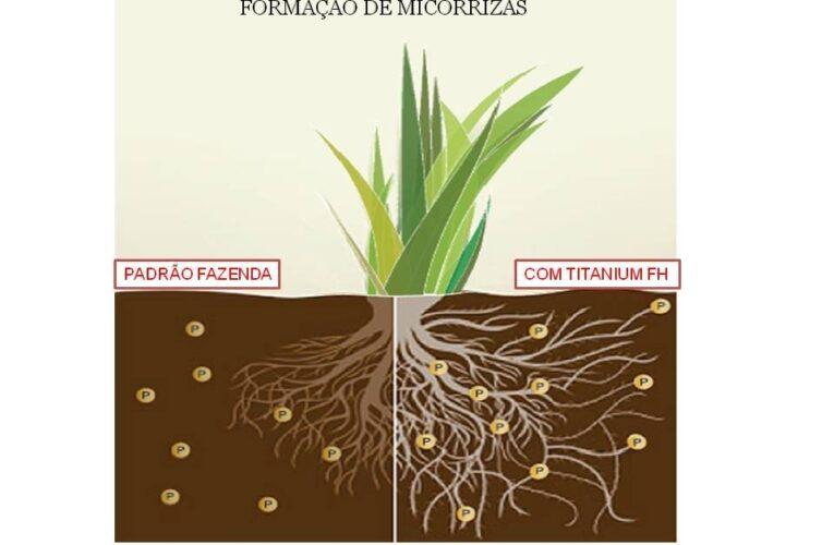 TITANIUM PLASTERTEC (gesso agrícola liquido)