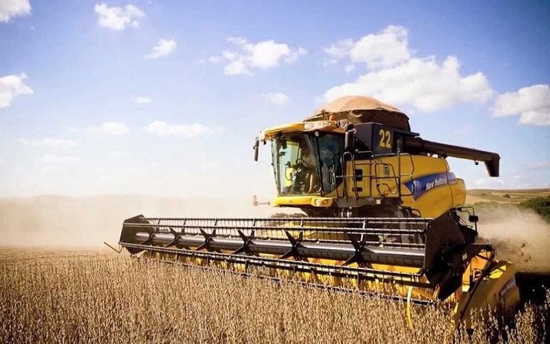 Colheita de soja no Brasil entra na reta final