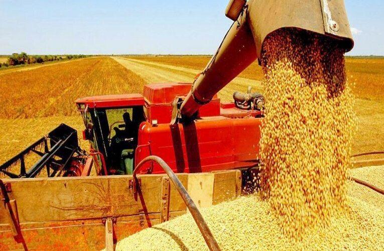 Mato Grosso do Sul bate recorde de produção de soja