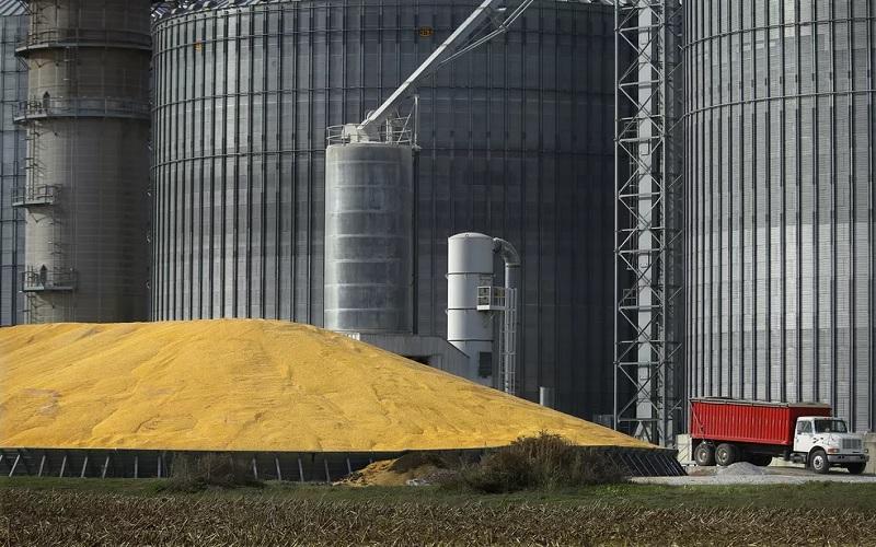 Mercado de grãos está em alerta