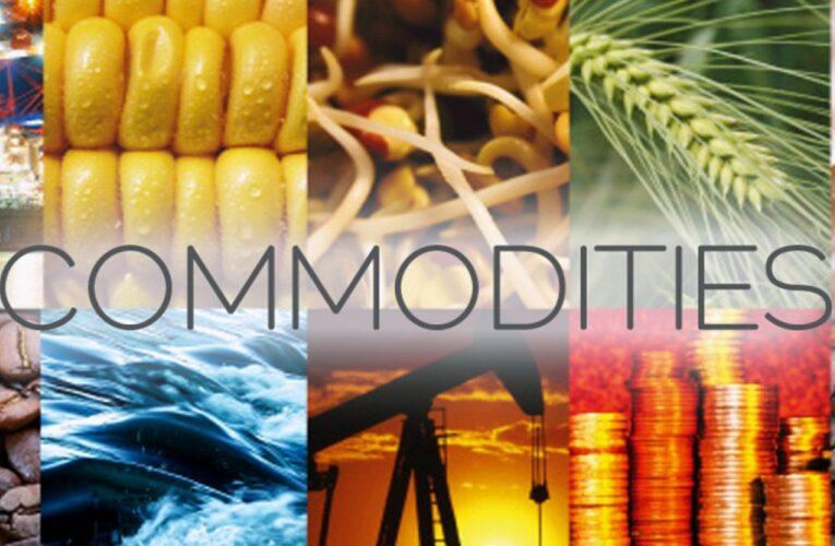 Câmbio e preços impactam commodities agropecuárias
