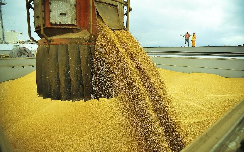 Brasil ultrapassa 10 bilhões em exportações agro