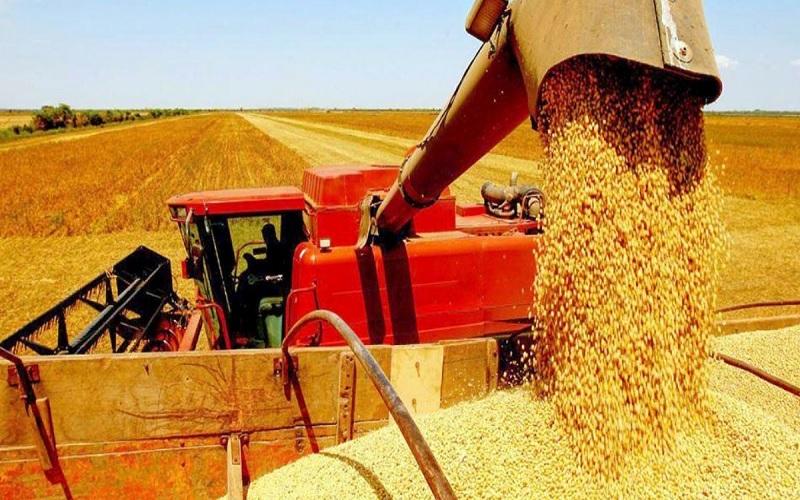 Preços da soja operaram em patamares recordes