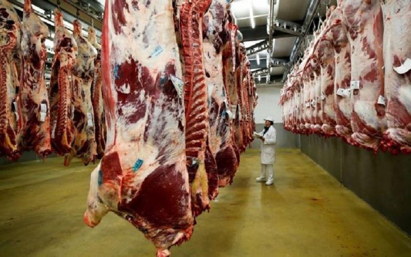 Embarques de carne bovina sobem em abril