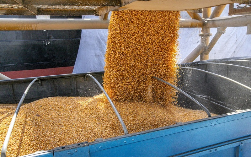 Porto de Paranaguá começa a receber cargas importadas de milho