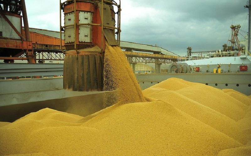 Embarques de soja ganham ritmo no Brasil