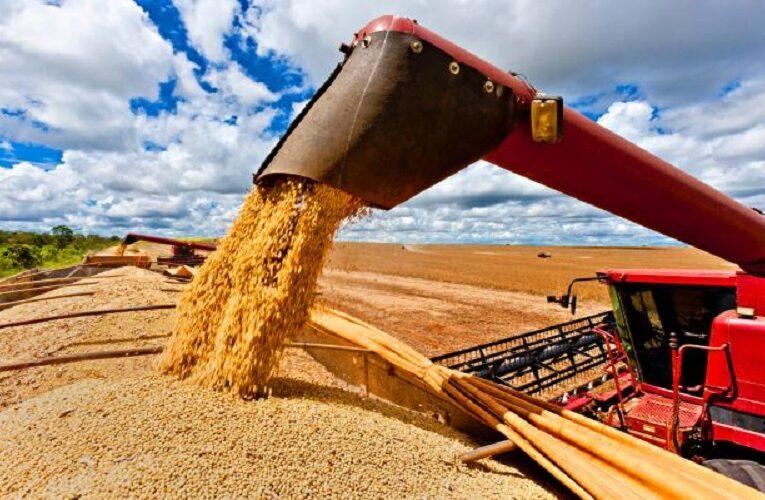 Potencial do agronegócio brasileiro