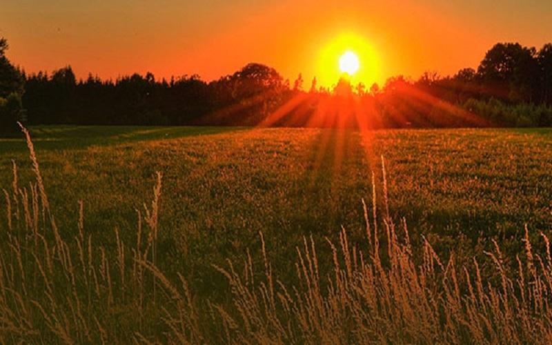 Sustentabilidade aplicáveis ao crédito rural