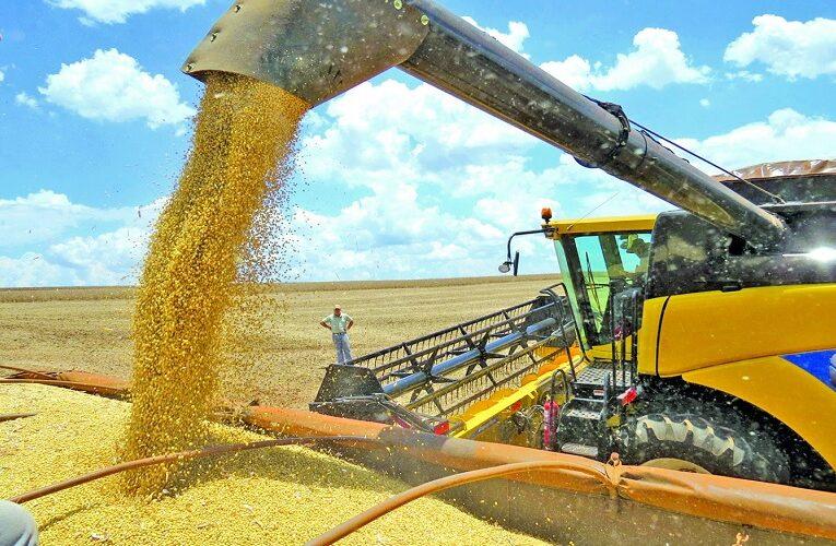 Vendas da safra 2020 2021 de soja em Mato Grosso do Sul