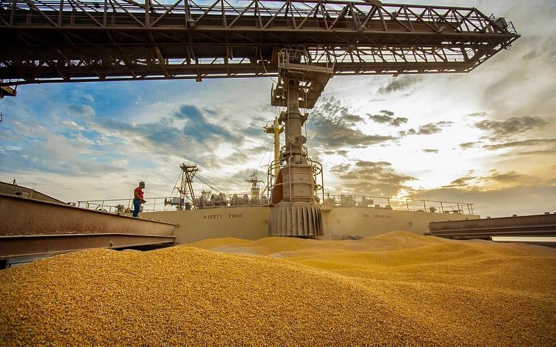 Exportação de soja e milho pelos portos do Arco Norte
