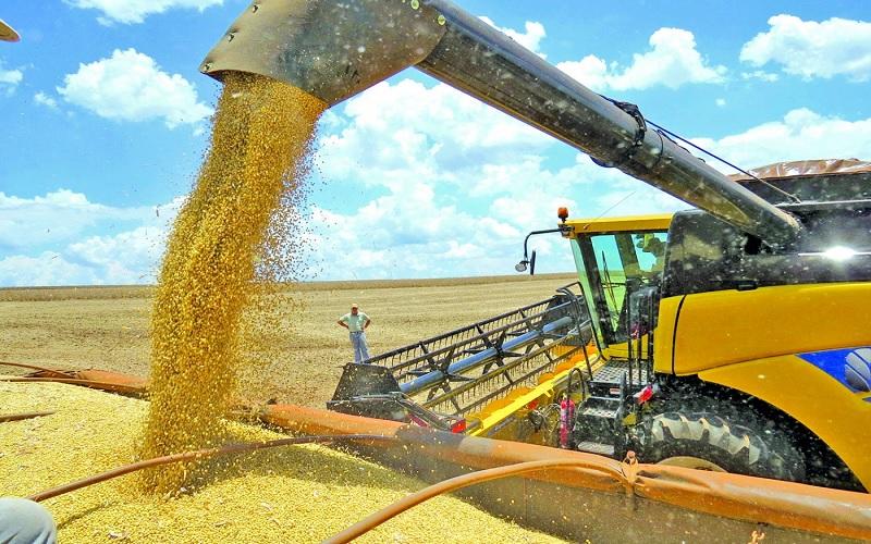Mercado da soja trava e preços recuam