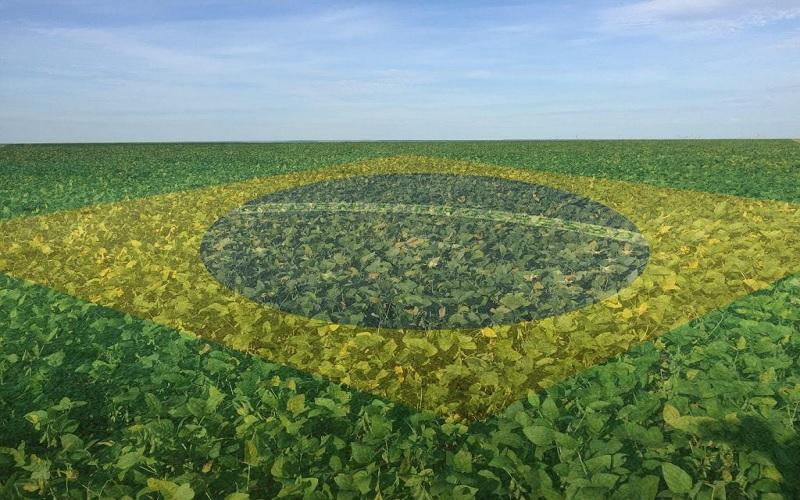 Investir no agro brasileiro faz bem para o meio ambiente