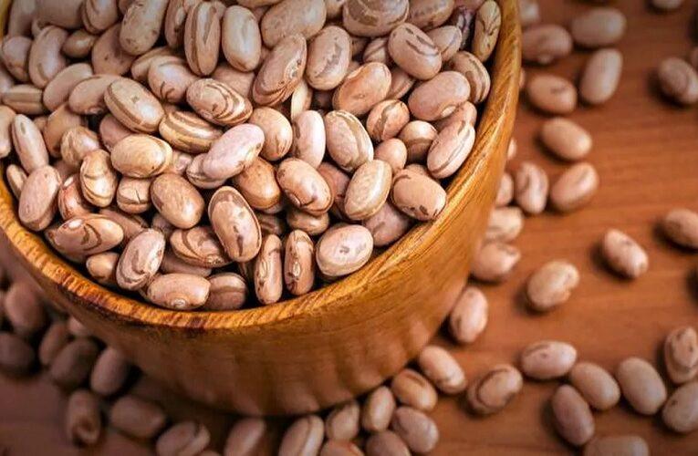 Procura e nova safra devem pressionar preços do feijão