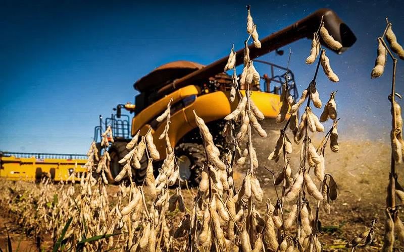 Mercado de soja trava no Brasil