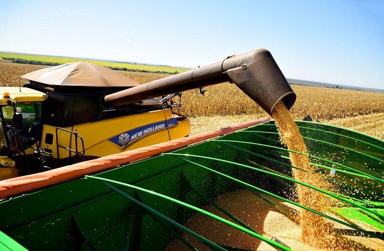 Brasil em quarto lugar em maior produtor de grãos