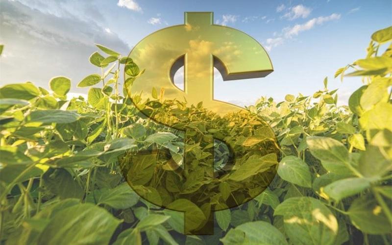 Saiba quais os impactos da Reforma Tributária no agronegócio