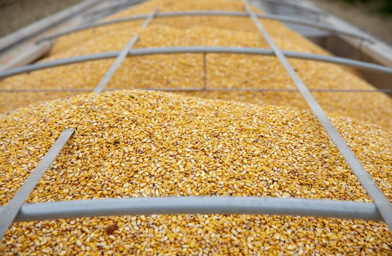 Nota com posicionamento sobre importação de milho