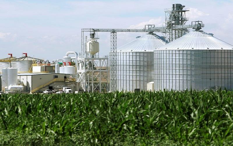 Estoques de milho dos EUA abaixo do esperado
