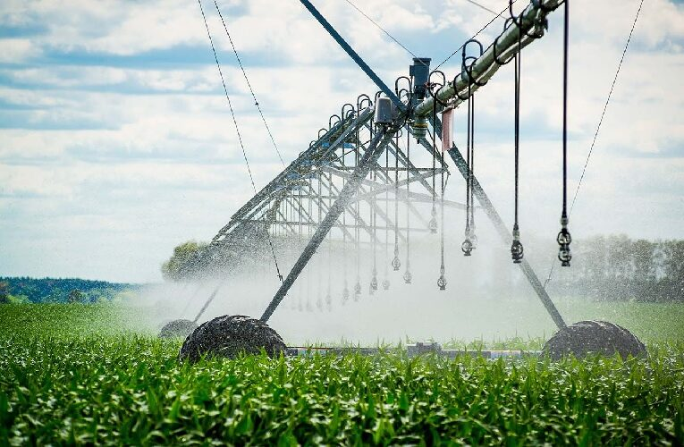 Agricultura irrigada para uma melhor produção de alimentos