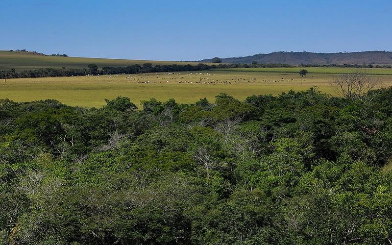 Indenização de propriedades em unidades de conservação