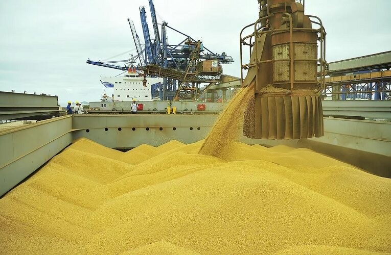 Volume e faturamento com exportações do agro seguem elevados