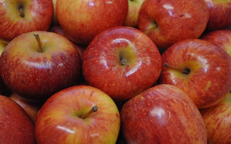 Brasil tornou se fornecedor internacional de maçã