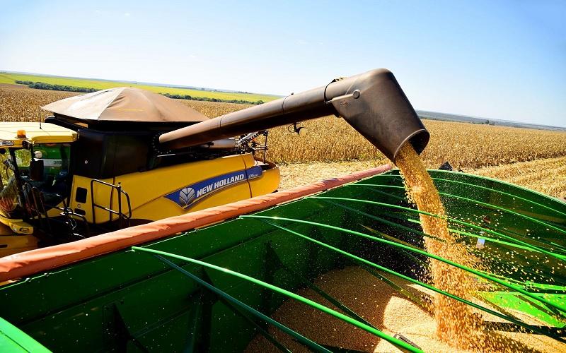 Estimativa de produção do milho segunda safra