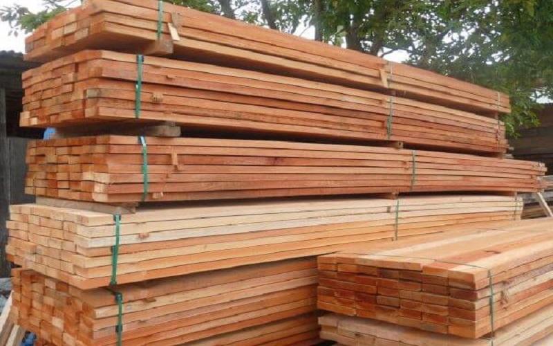 Máquina brasileira de classificação de madeira
