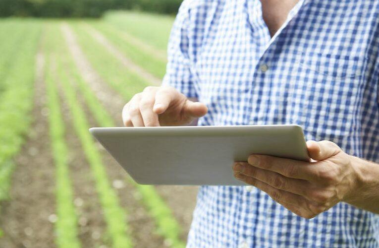 Conectividade é desafio gigantesco para o agro