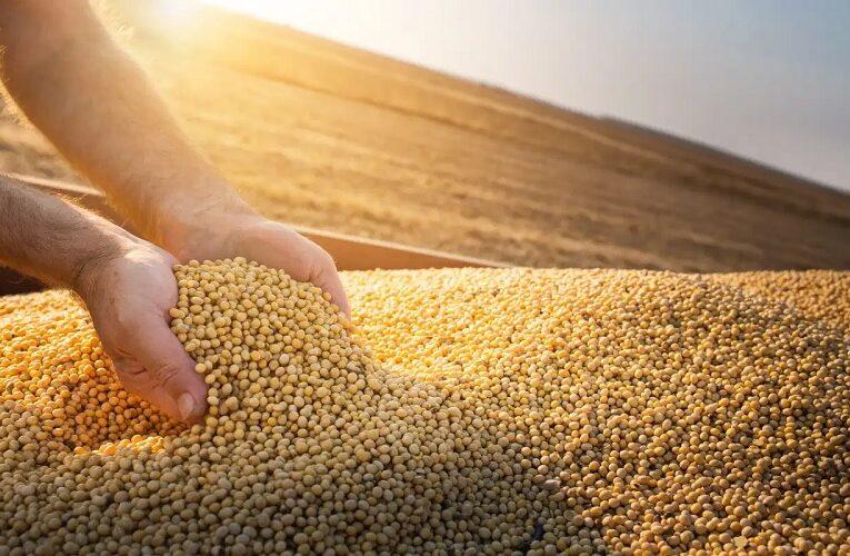 Clima fecha soja em alta nos EUA