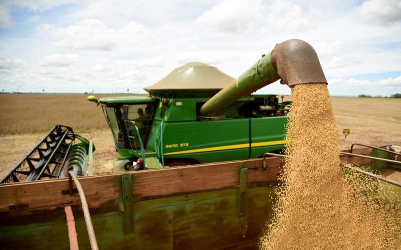 Produção brasileira de soja deve consolidar recorde